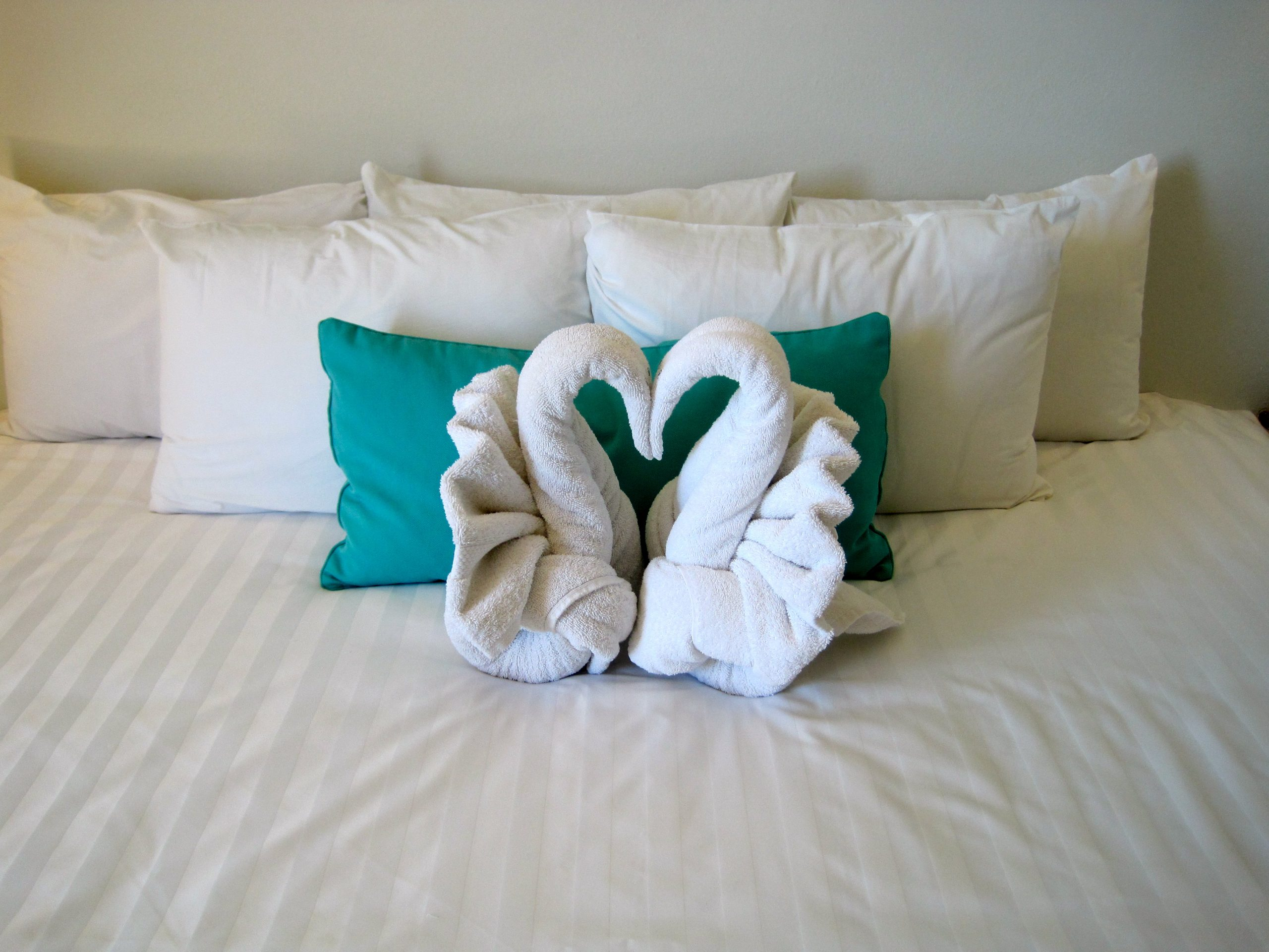 Housekeeping Tips For The New Bride