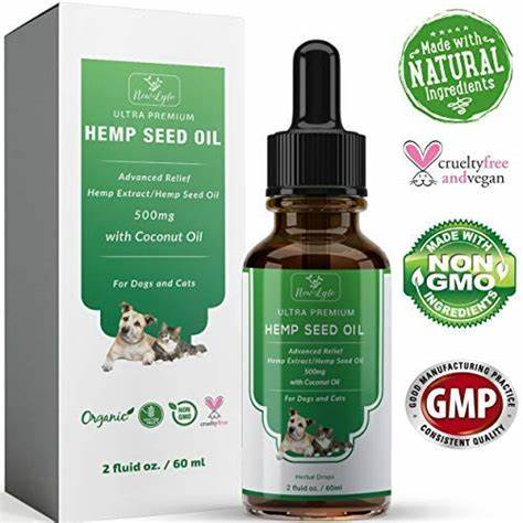 What Are The Best CBD Dog Treats To Use And Why?